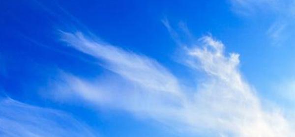 Naravni osvežilec zraka